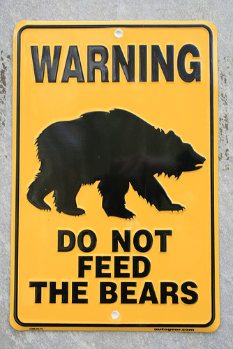 dont-feed-the-bears
