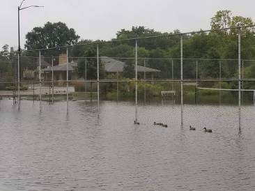 Flooded tennis courts with shelter sandbagged in the background.