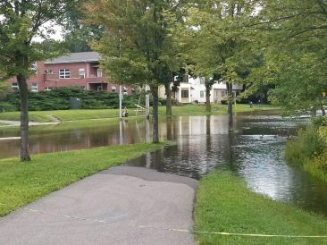 Tenney lagoon flooding all the way across Johnson St.